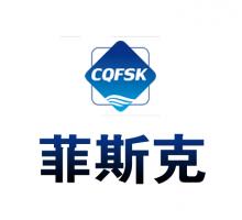 重庆菲斯克人力资源管理有限公司