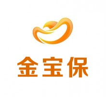 重庆金宝保信息技术服务有限公司