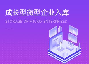 成长型小微企业奖励